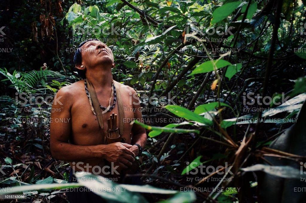 Tribal elder Binan Tukum hunting with his son for monkeys in the rainforest stock photo