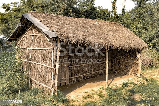 Typical makeshift hut in the rural tribal areas of eastern India. The hut is made of thatch formed of bamboo leaves arranged on the skeleton of bamboo planks, and serves a temporary purpose only. Tribals and Farmers make this kind of hut in the proximity of their field, work area and to the near of those places where their domestic animals and animlas could graze.