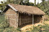 Tribal Hut having thatched roof, made from Bamboo Straws and sticks. A Typical house form of Tribal areas of Eastern India. Such houses are temporary and regulate temperature in natural way. - Image.