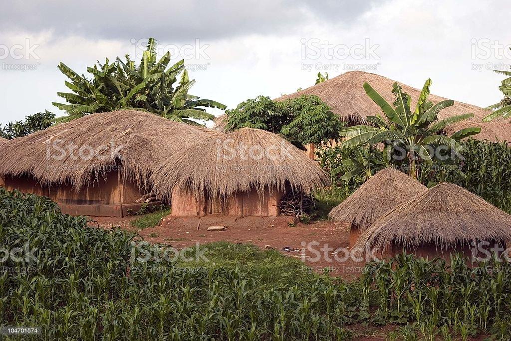 Tribal Village in Malawi royalty-free stock photo