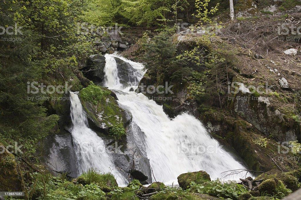Triberg Waterfalls royalty-free stock photo