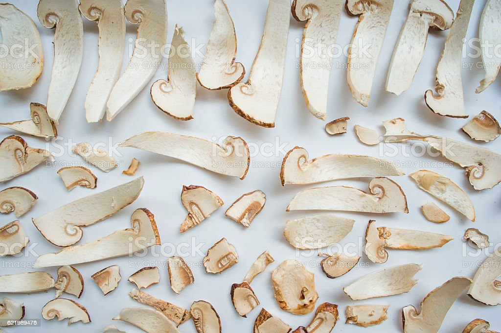 tricholoma matsutake slices stock photo