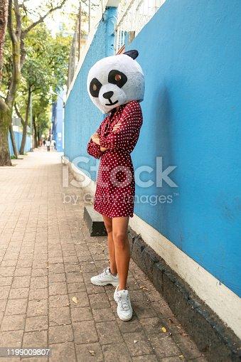 Woman dress like panda standing at city street