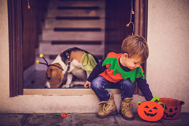 Trick or treat walk with my dog stock photo