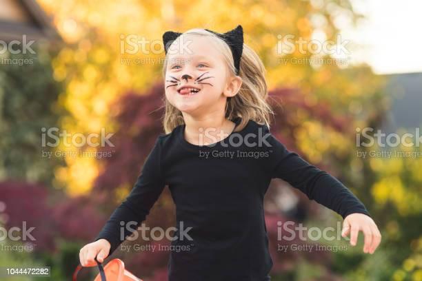 Trick or treating kitty cat picture id1044472282?b=1&k=6&m=1044472282&s=612x612&h=waahlj81dcw0nnu5xvoffvkf9vbcwcf3fjgclc 4lsq=