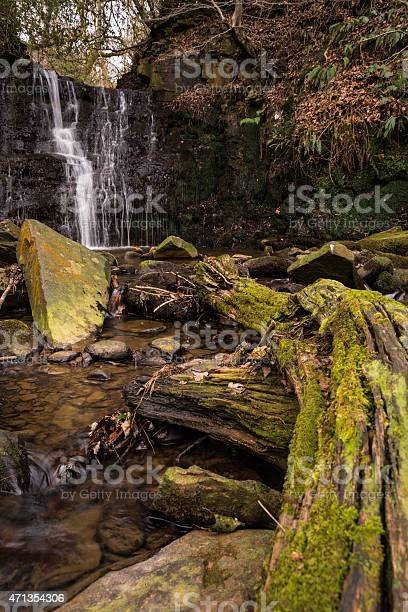 Photo of Trickling Tiger's Clough Waterfall In The English Woodland.