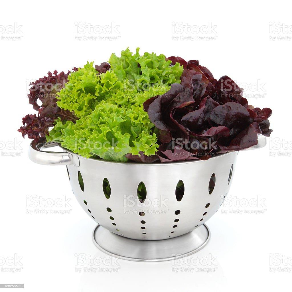 Tricolour Lettuce stock photo