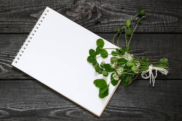 Trifolium repens or white clover and notebook Medicinal plant Trifolium repens or white clover (also known as Dutch clover and Ladino clover) and notebook to write recipes and methods of application. Used in herbal medicine, honey plant antitoxic stock pictures, royalty-free photos & images