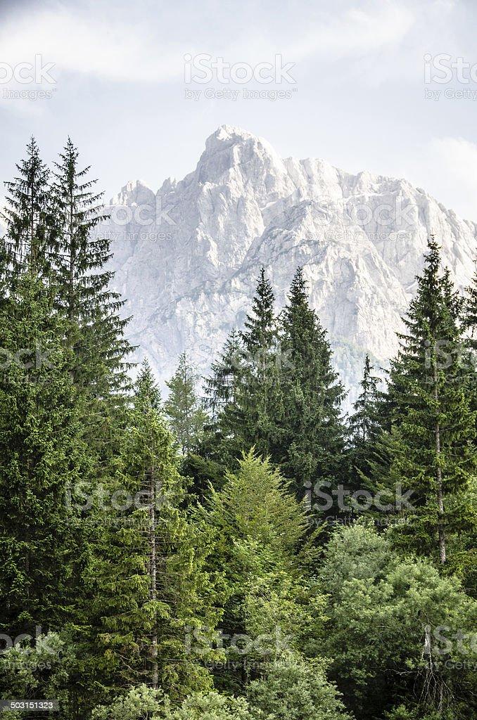 Triglav National Park ,Slovenia royalty-free stock photo