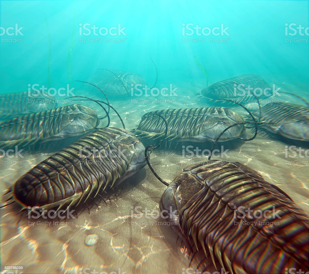 Trilobites Scavenging On The Seabottom stock photo