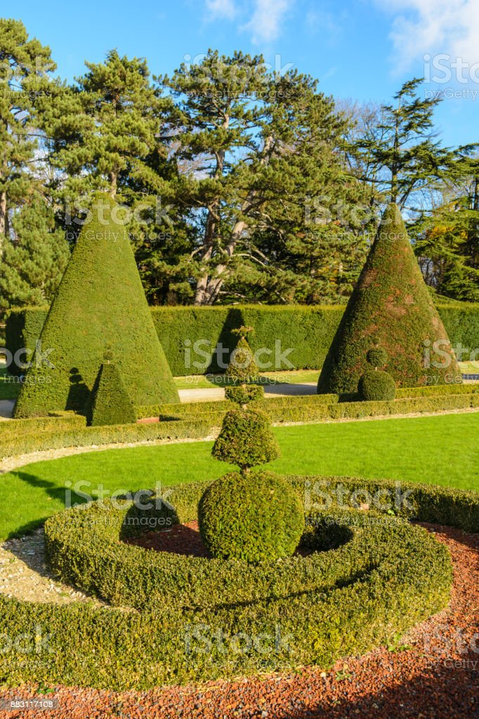 Trimmed boxwood and yew trees in a french formal garden stock photo