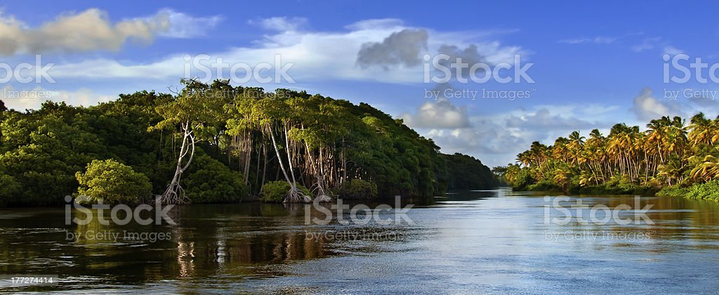 Trinidad and Tobago - Mayaro. stock photo
