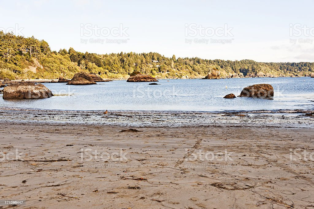 Trinidad Bay Views royalty-free stock photo