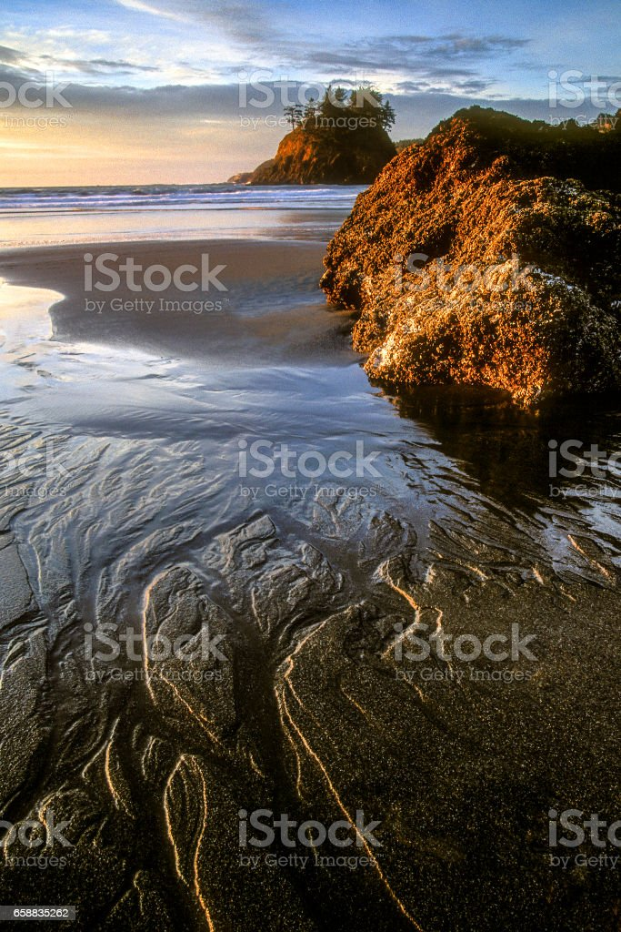 Trinidad State Beach stock photo