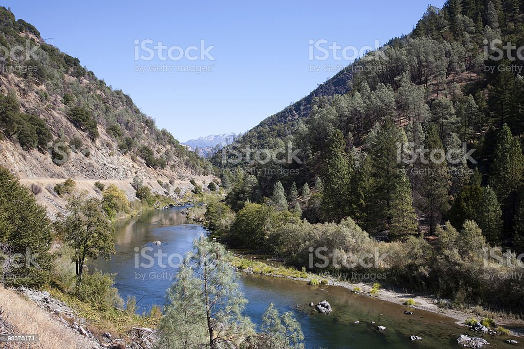 Trinity National Forest royalty-free stock photo