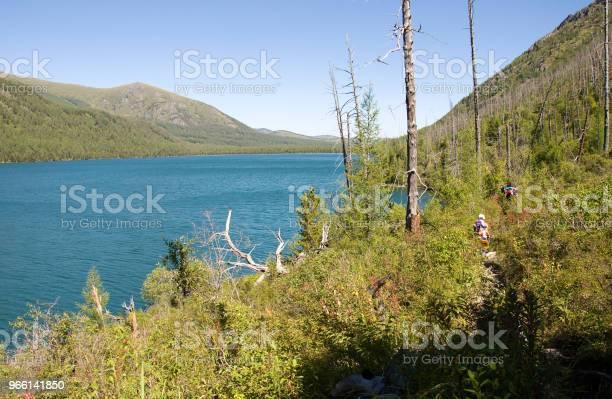 En Resa Genom Skogen Ovanför Sjön-foton och fler bilder på Berg