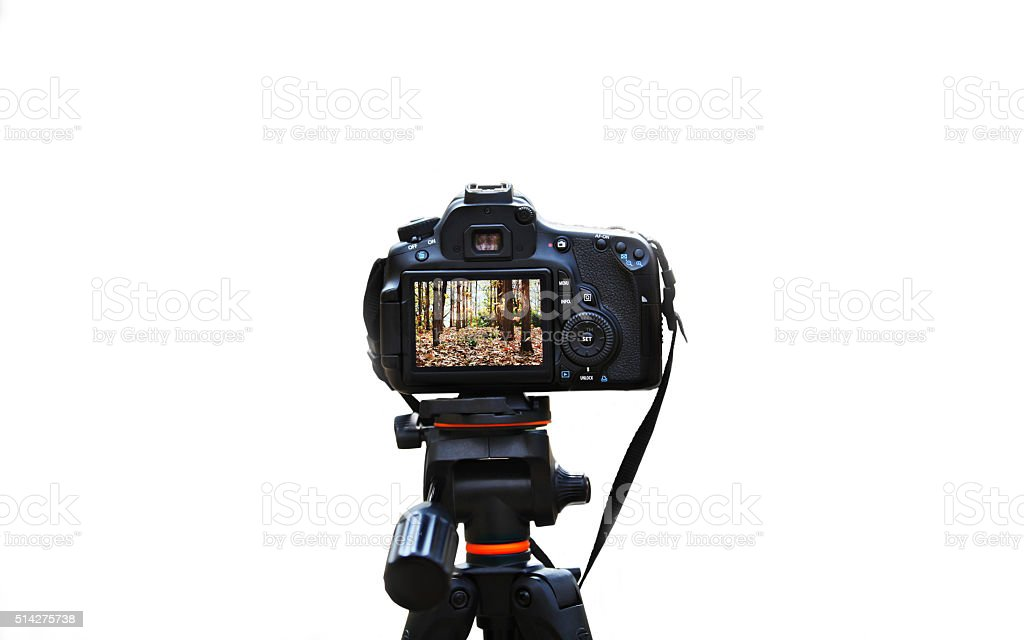 Tripod And Digital Camera stock photo