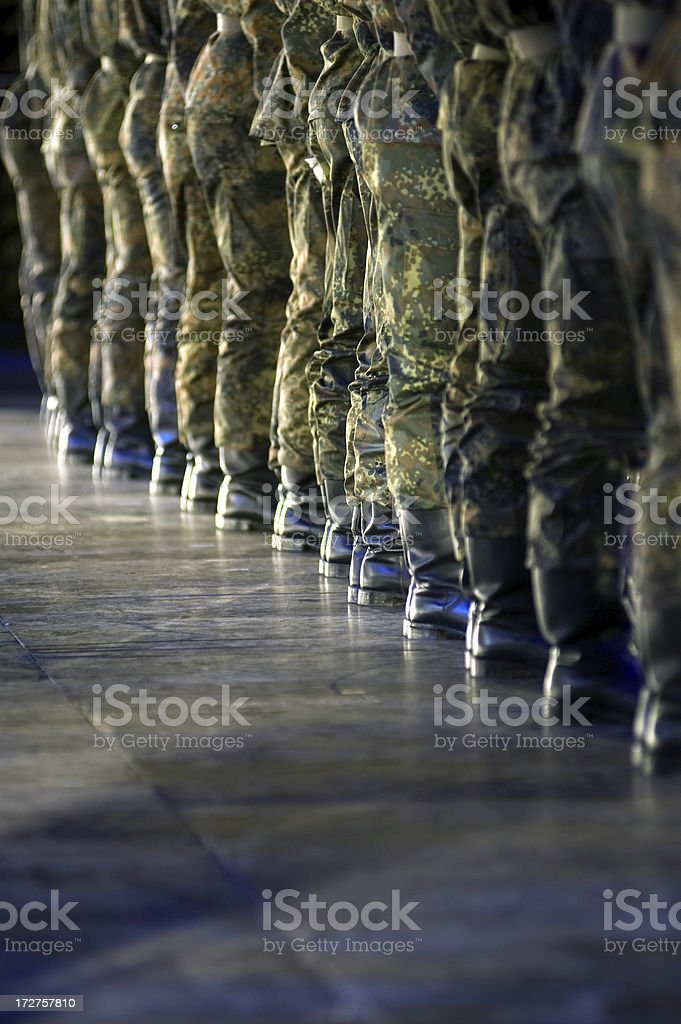 Troops! Form up! royalty-free stock photo