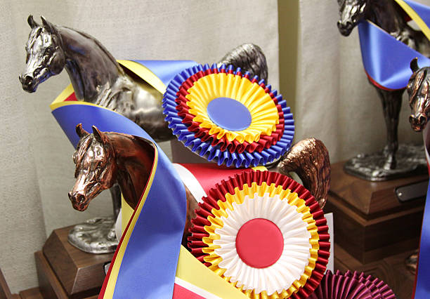 Trophies for horses picture id122945830?b=1&k=6&m=122945830&s=612x612&w=0&h=wf1eat gy  s jlnmclarviyiwxhx5q8w1p 8nl5y40=