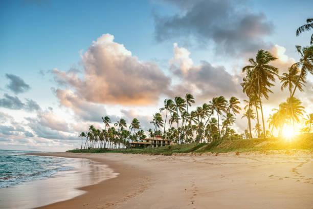 tropischen Strand von Guarajuba, Brasilien – Foto