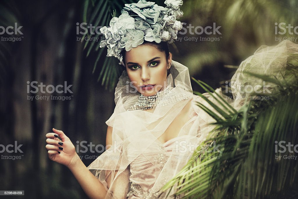 Tropic Beauty stock photo