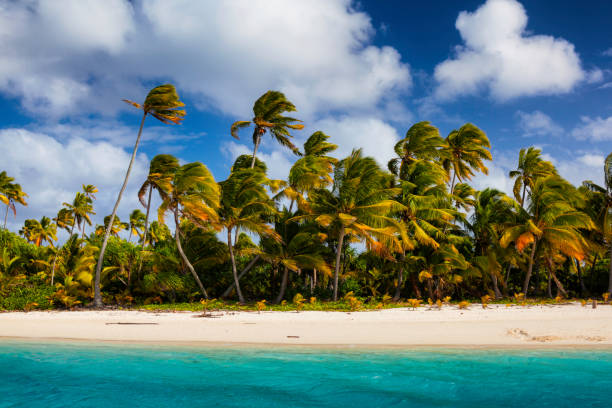 Tropical Aitutaki Lagoon In The Cook Islands One of the beautiful islands in Aitutaki lagoon, in the Cook Islands. south pacific ocean stock pictures, royalty-free photos & images