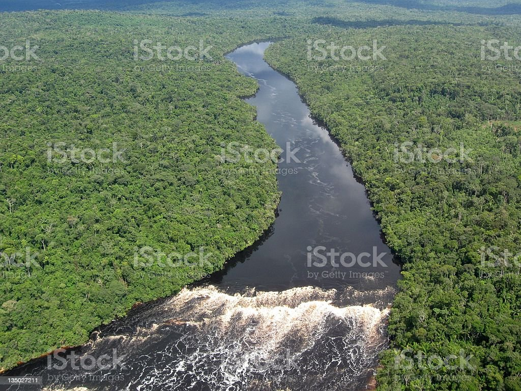 Tropical Amazon River stock photo