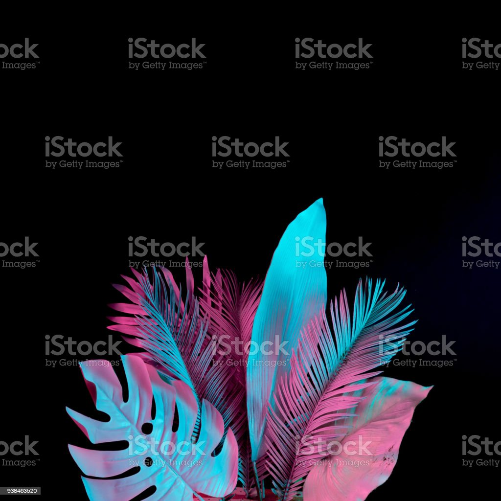 Tropical and palm leaves in vibrant bold gradient holographic neon  colors. Concept art. Minimal surrealism background. stock photo