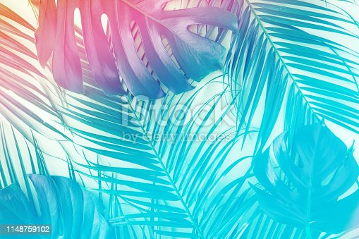 Tropical and palm leaves in vibrant gradient holographic colors. Minimal art surrealism concept.