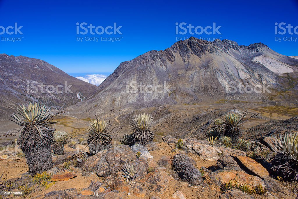 Tropical Andes Landscape stock photo