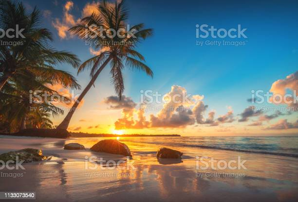 Photo of Tropical beach and beautiful sunrise view in Punta Cana bay, Dominican Republic