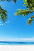 Tropical beach and palm leaves copy space scene