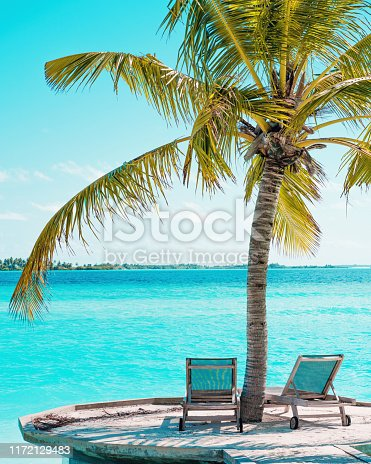 Tropical Beach and Palm Trees in Maldives