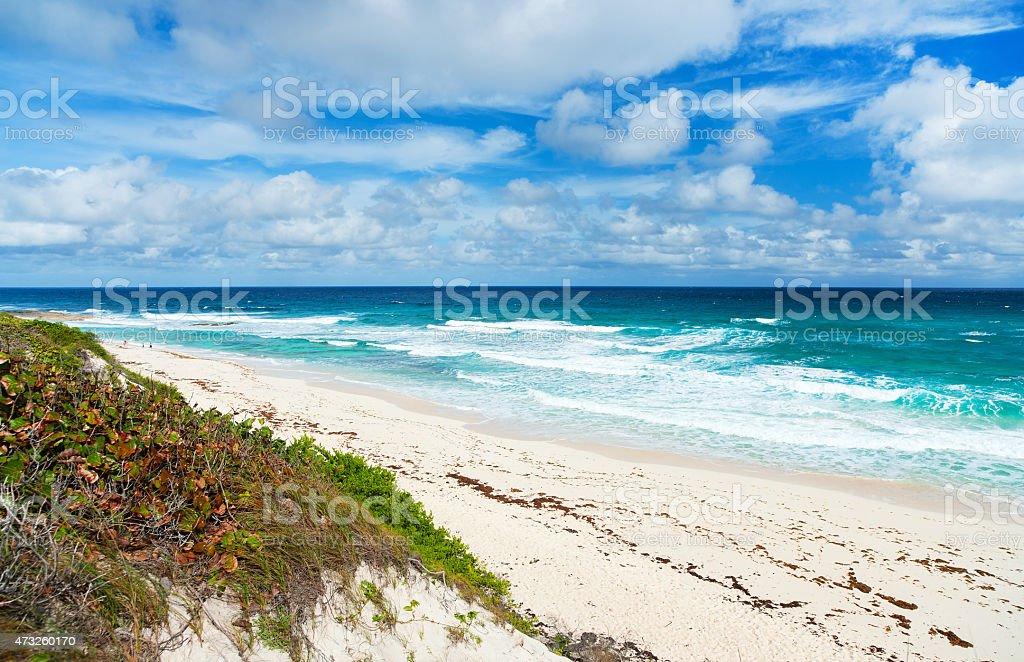Tropical beach and sea stock photo