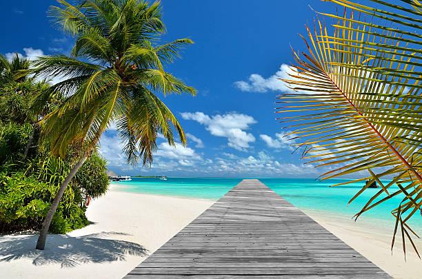 plage tropicale de la jetée et pont de bois - passerelle pont photos et images de collection
