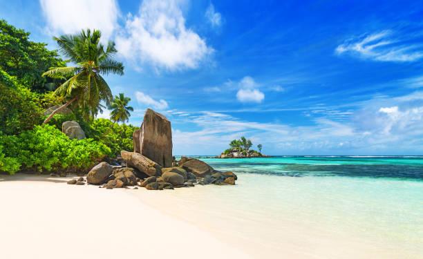 열 대 해변 섬 마헤, 세이셸에서 안 세 로얄 - 세이셸 뉴스 사진 이미지