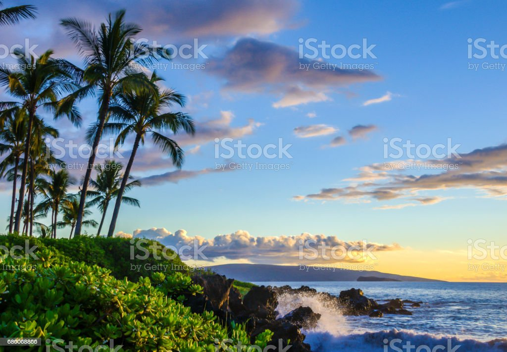 Tropical beach at sunset.  Palm trees and local lush foliage with waves splashing onto lava rocks. stock photo