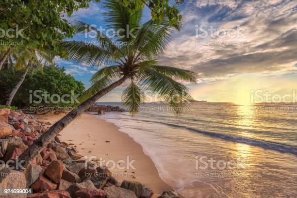Tropical beach at sunset picture id924699004?b=1&k=6&m=924699004&s=612x612&h=zkwlwzrhhlt6bvrs zng4qtwxffa5qiubowe1vz7lq0=