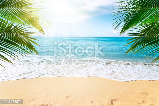 istock Tropical beach background 1145474071