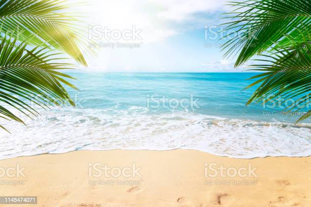 Photo of Tropical beach background