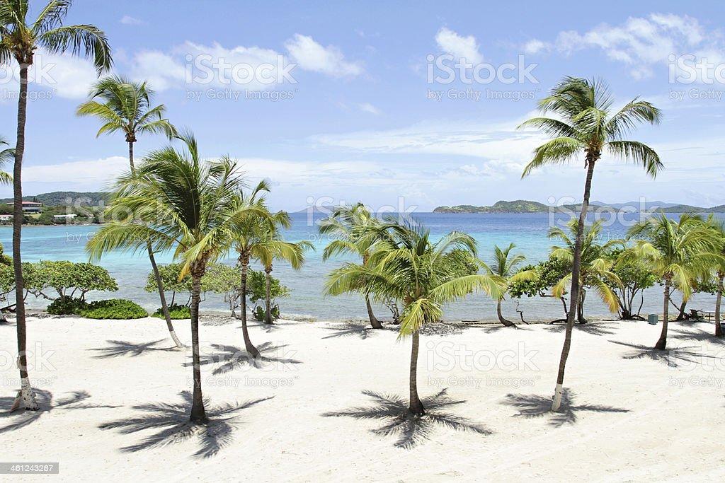 Tropical Beach, Caribbean stock photo