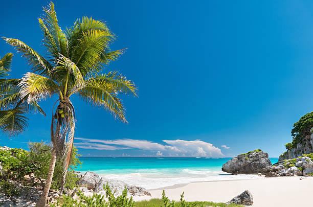 Tropical Beach, Carribean, Tulum, Mexico stock photo