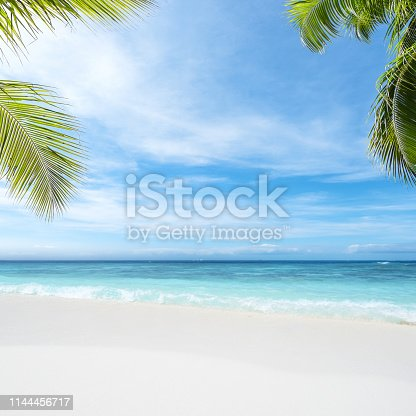 Tropical beach copy space scene