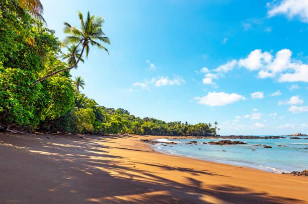 Tropical Beach, Corcovado national park, Costa Rica stock photo