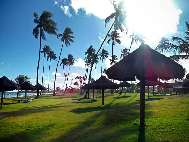 Tropical Beach Eco bangalôs do Resort, na Bahia, Brasil - foto de acervo