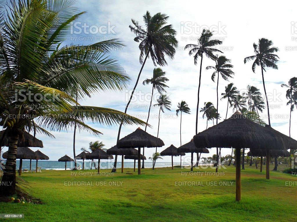 Tropical Beach Eco bangalôs do Resort, na Bahia, Brasil foto royalty-free