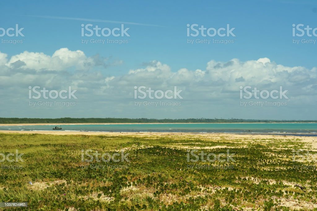 Tropical beach - Grass, water and cloudy horizon stock photo