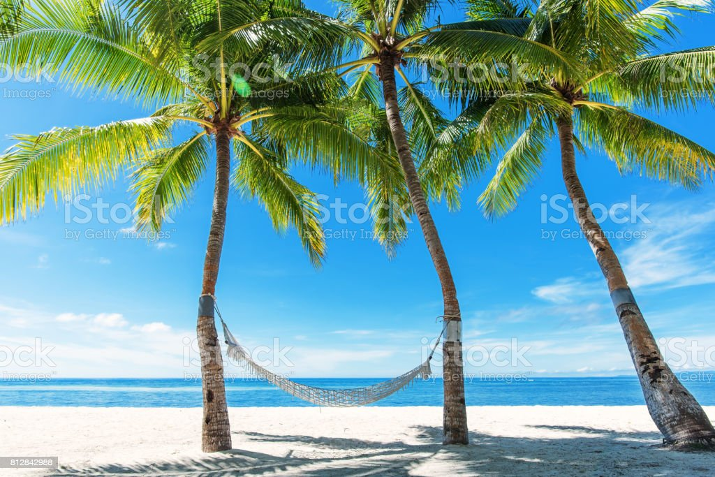 Tropical beach hammock relaxation in summertime stock photo