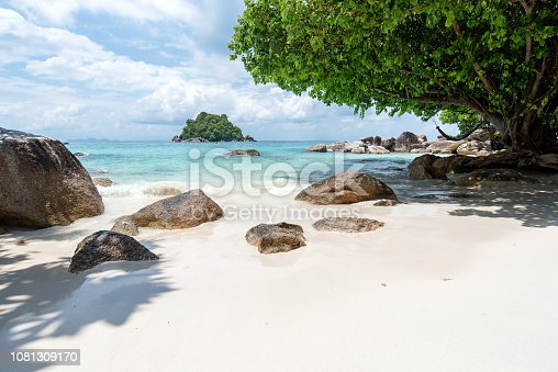 Tropical Beach Idyllic Landscape