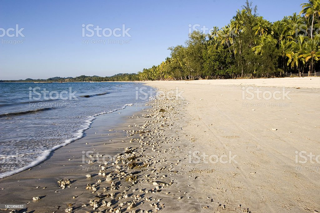 Tropical beach III stock photo